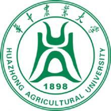 华中农业大学考研一对一集训营辅导班